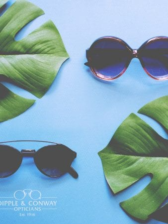 Glasses with leaves in background