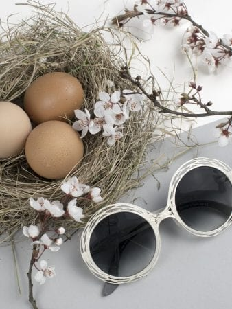 glasses with blossom and nest in background